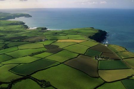 Практика решения земельных споров